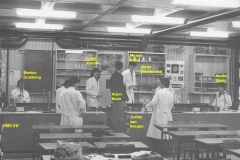1980-1981-6V-scheik-met namen-onvoll